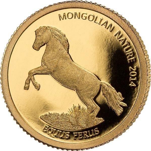 500 Togrog Mongolei Pferd 2014