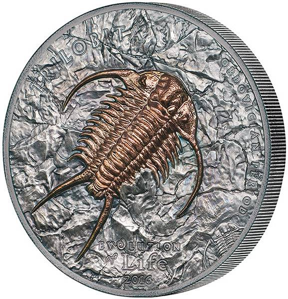 500 Togrog Mongolei Evolution Trilobit