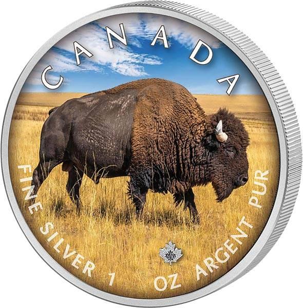 5 Dollars Kanada The Trails of Wildlife Bison 2021