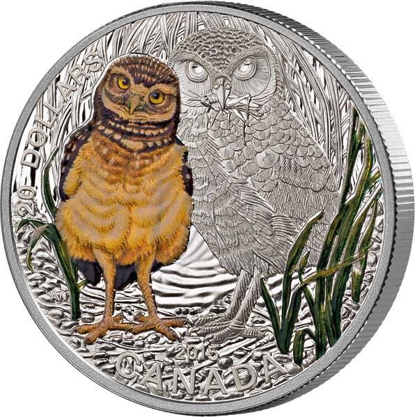 20 Dollars Kanada Tierbabys Eule Stamp und Coin Set 2015