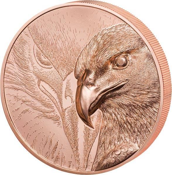 250 Togrog Mongolei Majestätischer Adler 2020