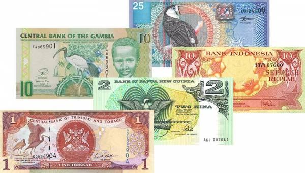 5 Werte Banknotensatz Vögel verschiedene Jahrgänge