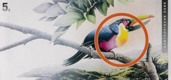 Silberbarren Die Klimazonen der Welt Tukan