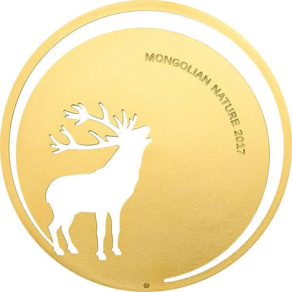 500 Togrog Mongolei Hirsch 2017