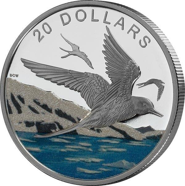 20 Dollars Kanada Funkelnder Norden Küstenseeschwalbe 2017