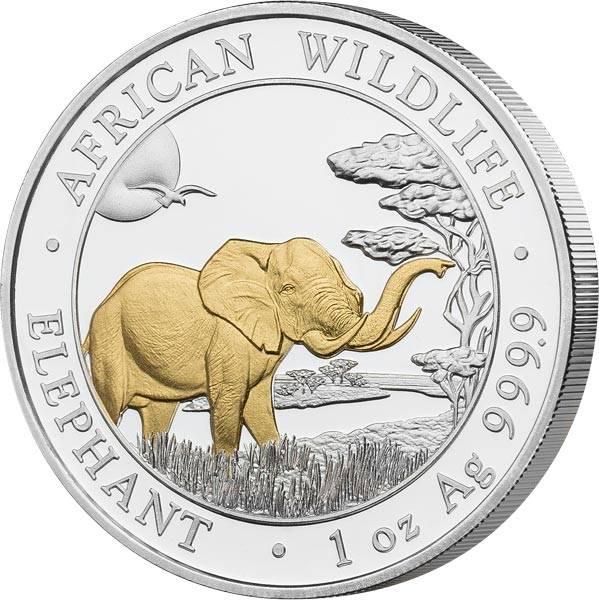 100 Shillings Somalia Elefant 2019