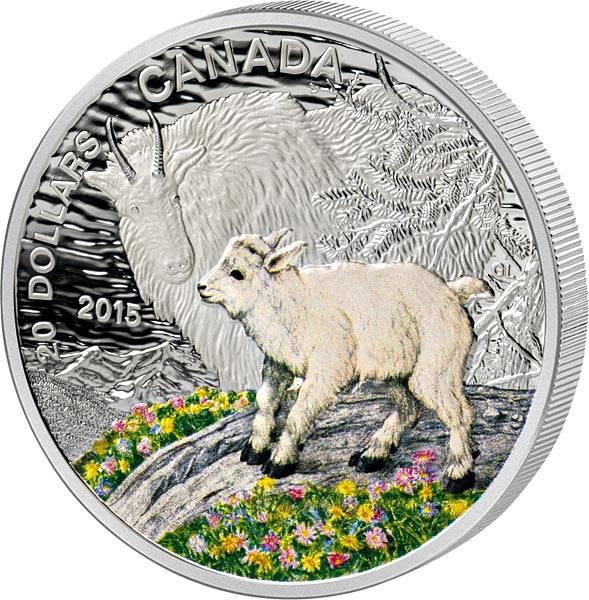20 Dollars Kanada Tierbabys Bergziege 2015