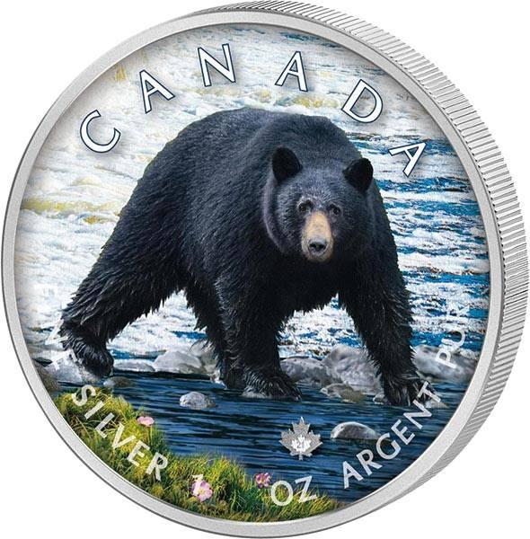 5 Dollars Kanada The Trails of Wildlife Schwarzbär 2021