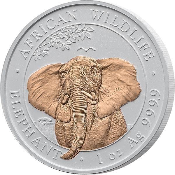 100 Shillings Somalia Elefant 2021 mit Karamikveredelung
