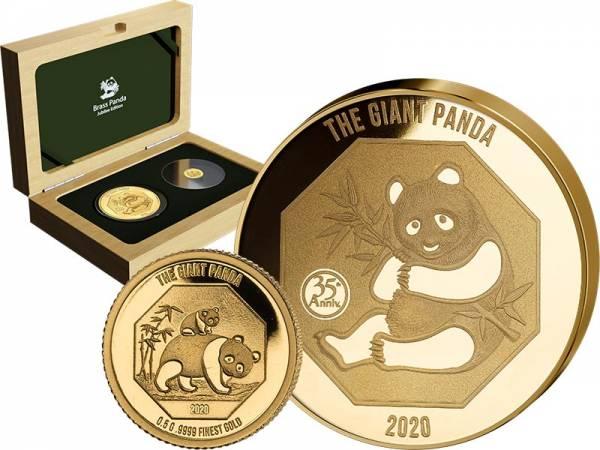 Brass Panda Jubilee Set 2020
