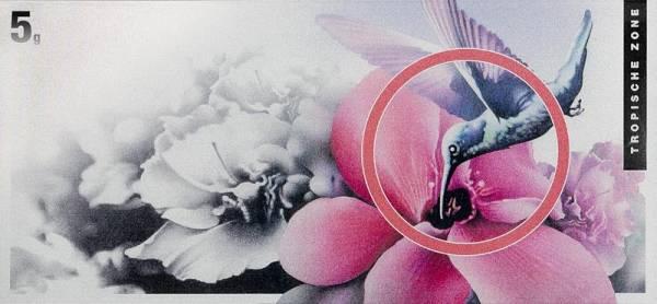 Silberbarren Die Klimazonen der Welt Kolibri