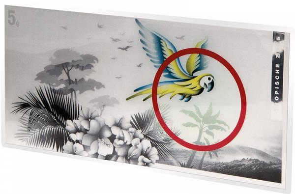 Silberbarren Die Klimazonen der Erde Papagei