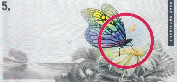 Silberbarren Die Klimazonen der Erde Schmetterling